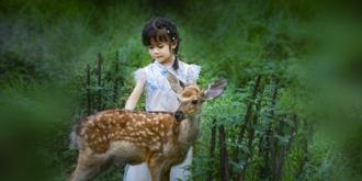 女孩和小鹿