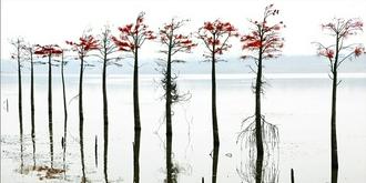 大泉湖独特景观