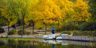 北京植物园秋色斑斓