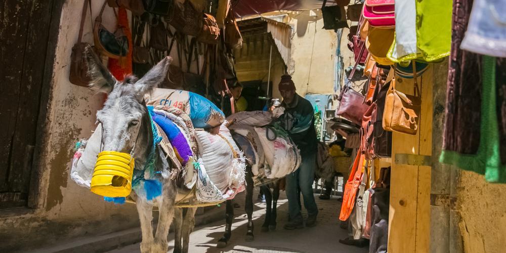 非洲最臭城市