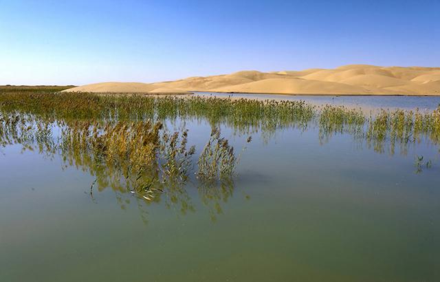 一半水,一半沙!中国最美水上沙漠