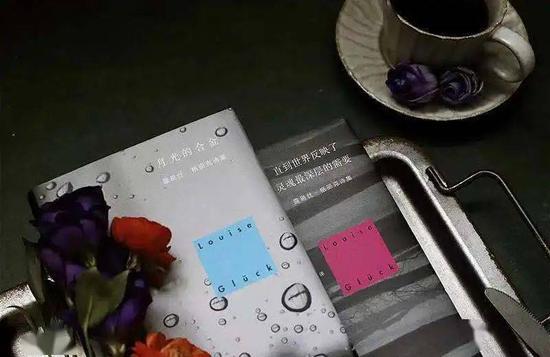 世纪文景出版露易丝·格丽克中文版诗集《月光的合金》《直到世界反映了灵魂最深层的需要》