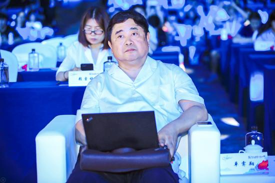 故宫学院院长、中国文物学会会长 单霁翔