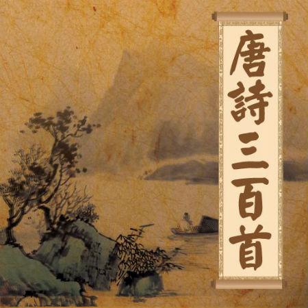 唐代的诗歌流传的数量最多、影响最为广泛