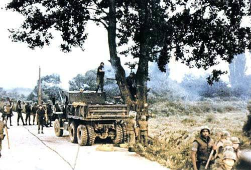 白杨树事件中,全副武装的美军在飞机、坦克掩护下再次砍树