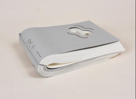 design studio 出版单位:江苏凤凰科学技术出版社   本书的设计语言一