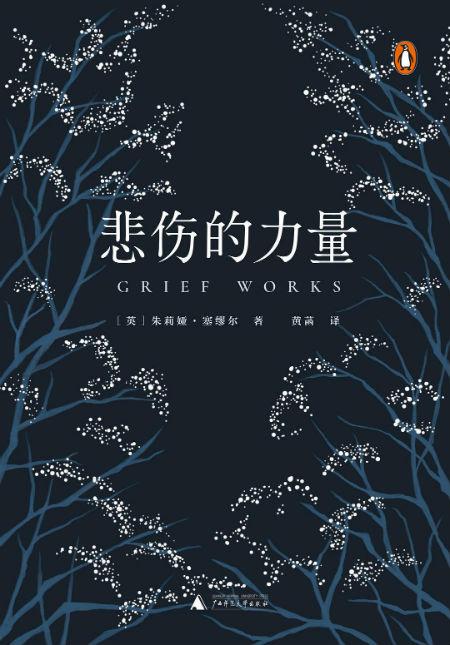 《悲伤的力量》   [英]朱莉娅·塞缪尔  黄菡    广西师范大学出版社