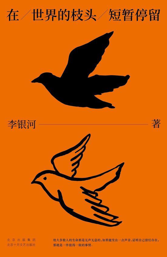 《在世界的枝头短暂停留》  李银河  北京十月文艺出版社