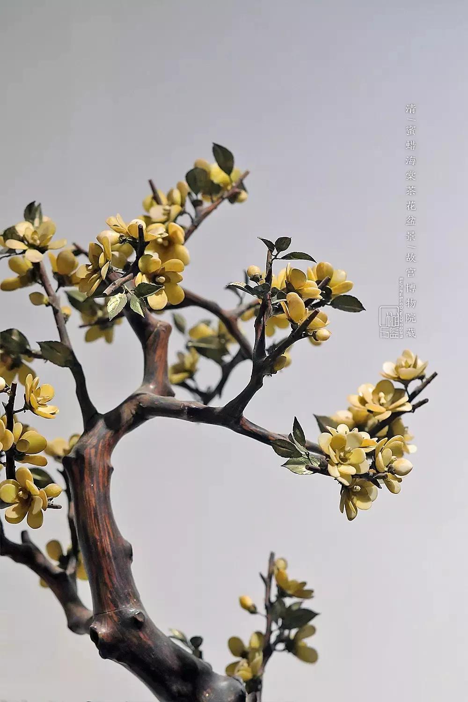蜜蜡海棠茶花盆景 清   故宫博物院藏