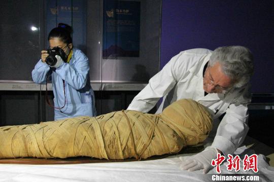 """图为""""不朽之旅——古埃及人的生命观""""特展开箱布展现场,专家正在对文物进行点交。 赵晓 摄"""