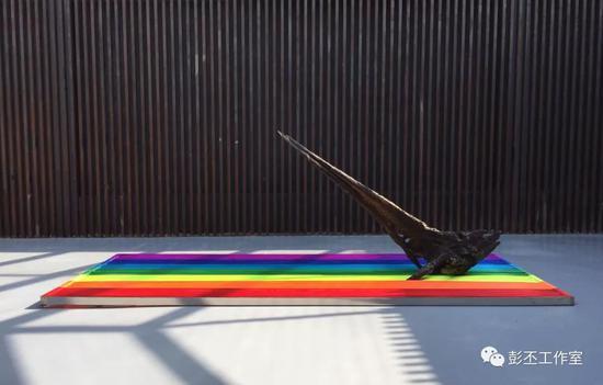 彭丕自然生长-彩虹之巅装置(阴沉木,铝合金,彩绳)500x200x180cm 2017 图片提供(彭丕工作室)