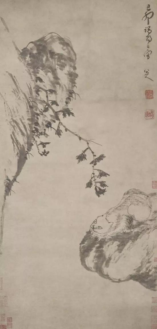 《蜷猫图》 1699 年 弗利尔美术馆藏