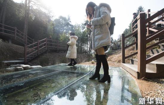 1月22日,游客在上虞区凤凰山考古遗址公园参观古窑址的青瓷残片。