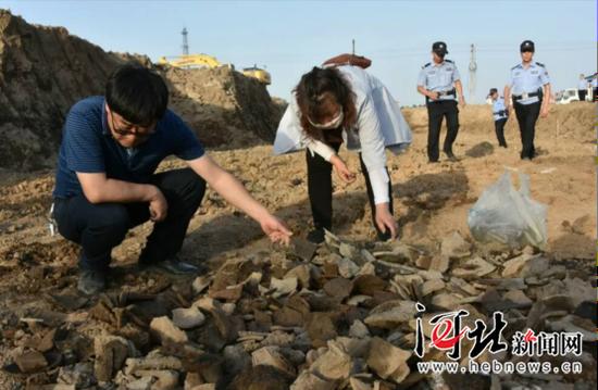 秦皇岛市抚宁区西街棚户区疑似发现汉代古墓