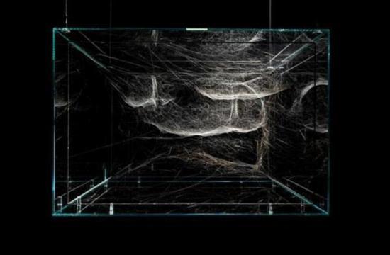 《混合的孤独半社会化》,蜘蛛网,2017