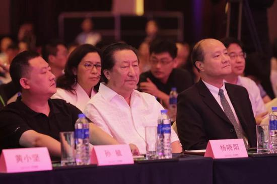 中国国家画院院长  杨晓阳
