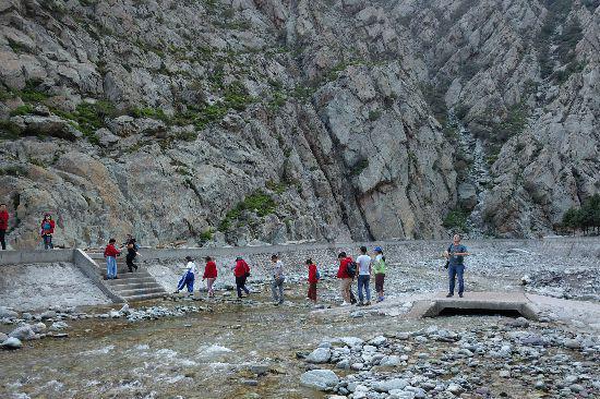 记者们在岩画景区参观。