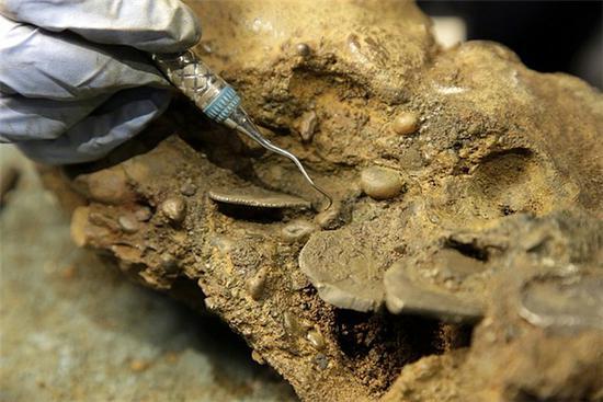 考古学家从维达号凝结物中分离银币