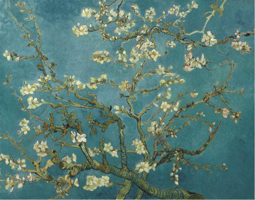 《杏花》Almond Blossom, 1890