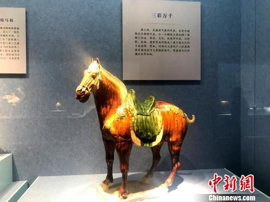 图为展出的唐三彩马。 崔佳明 摄