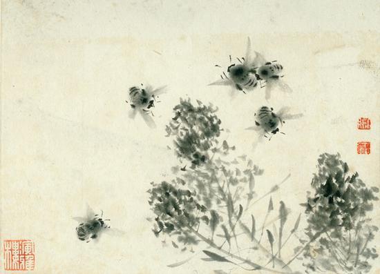 《菜花蜜蜂》1965年