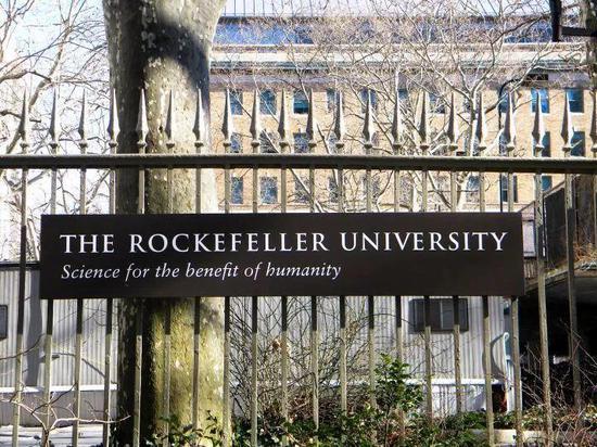 ▲ 洛克菲勒大学
