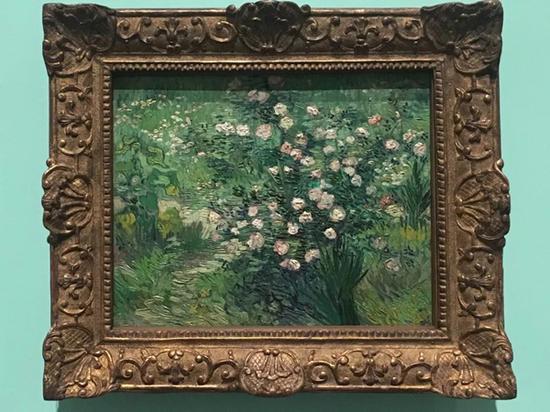 """日本国立西洋美术馆藏""""松方藏品""""之一梵高《玫瑰》"""