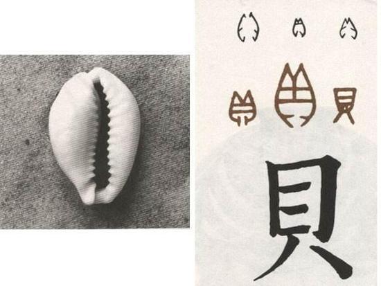 从贝壳到钱币:为什么最早的货币出现在中国?