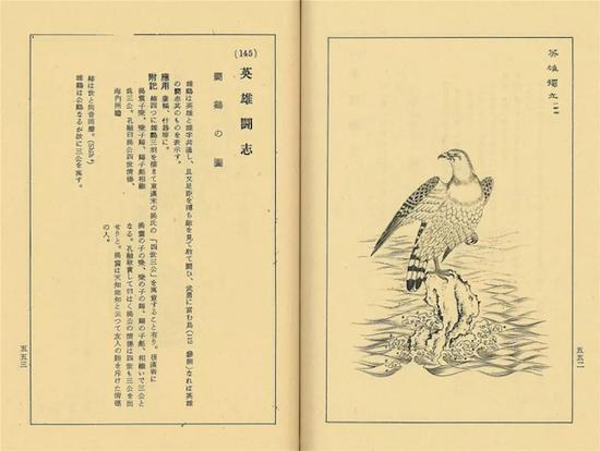 八大山人晚年绘鹰有何渊源