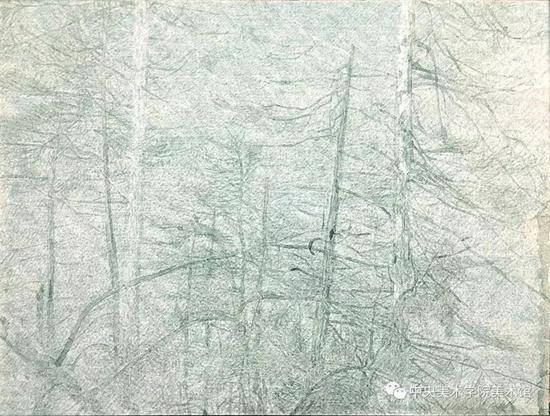曹轶,黑森林No.3,149x198cm,纸本丙烯,2018