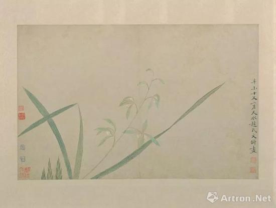 文俶《花卉图》册中一幅