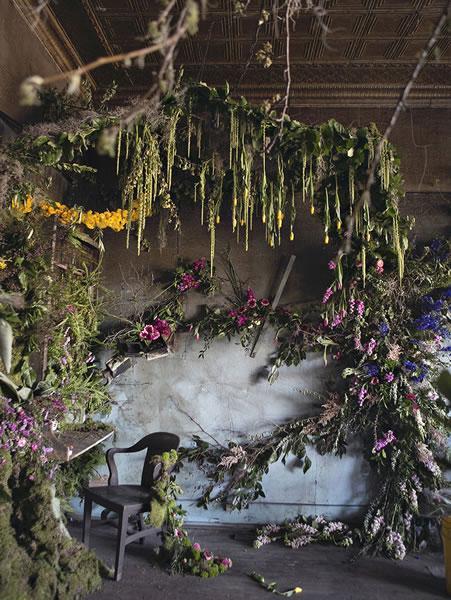 底特律废弃房屋成为花房