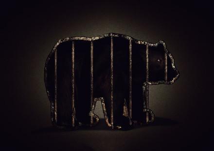 保护动物宣传公益海报图片