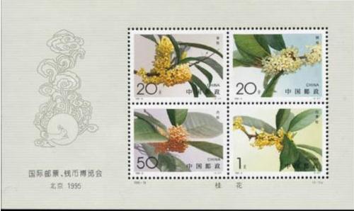 邮币小花絮——邮票上的桂花