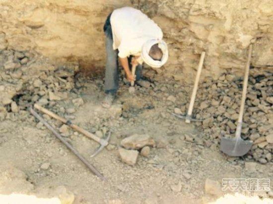 男子野外挖到奇石:切割后的发现让人震撼