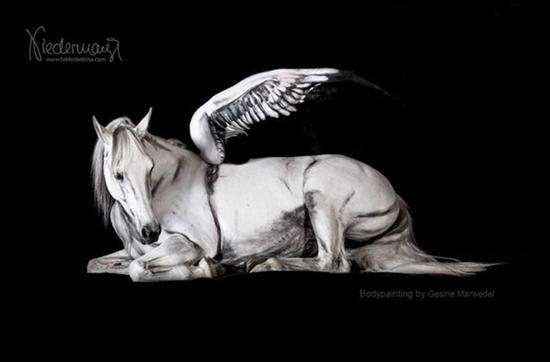 最后,终极难题:这只马是怎么摆出的?