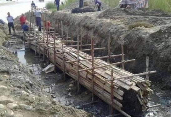 老人无意挖出5吨乌木 做成3米大床 专家当场气晕