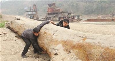 乐山村民发现的大乌木