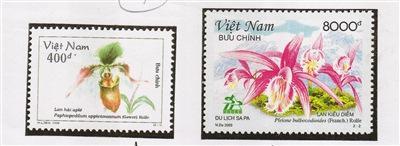 越南邮票上的海南兜兰。