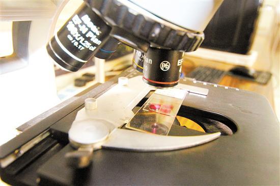 新汇红木检测有限公司配备有多种检测设备,其中显微镜主要用于木材切片的观察。