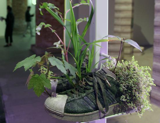 鞋子被放在多层的基座上,形成了一面墙