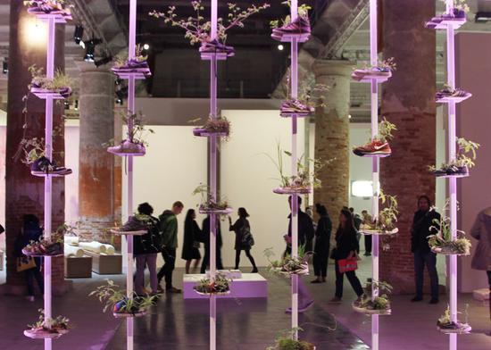 在2017威尼斯艺术双年展上,艺术家展示了一系列被当做花盆的球鞋