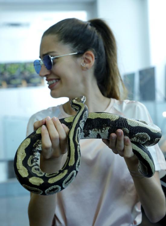 """7月1日,在克罗地亚萨格勒布,一名游客与蛇类""""收藏家""""内文·弗巴尼奇所有的一条蟒蛇亲密接触。"""