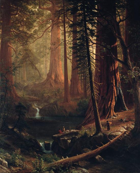 阿尔伯特·比尔史伯特,《加利福尼亚的巨型红杉树》,约1874年