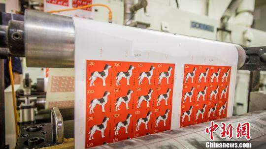 第四轮生肖狗邮票开机印刷