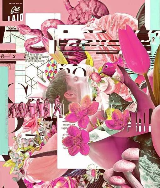花朵是植物的生殖器,是艺术家对性与欲望的隐秘表达。