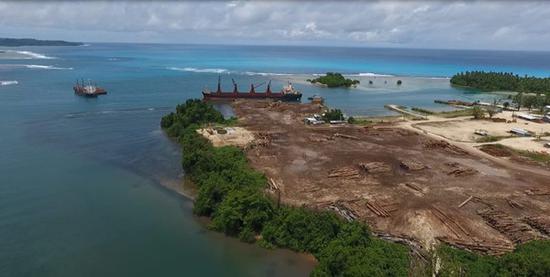 巴新被砍伐的森林。 全球见证供图