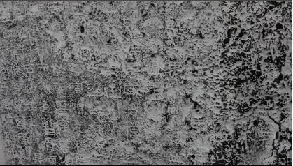 内蒙古大学蒙古学研究中心官网公布的相关考古视频截图。