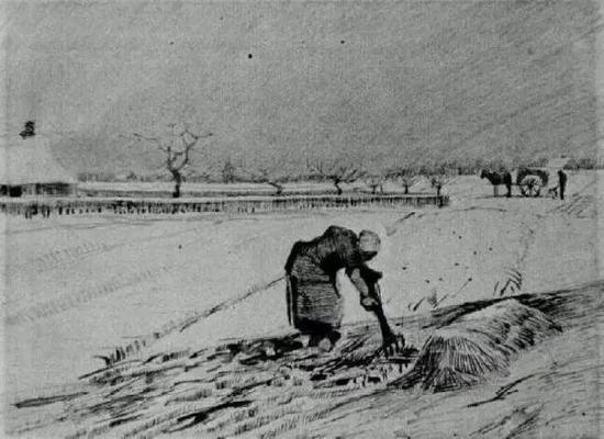 雪地里弯腰劳作的女子