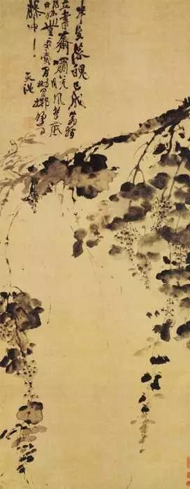 """徐渭的传世著名作品之一《墨葡萄图》,他还题了四句诗:""""半生落魄已成翁,独立书斋啸晚风。笔底明珠无处卖,闲抛闲掷野藤中""""。"""